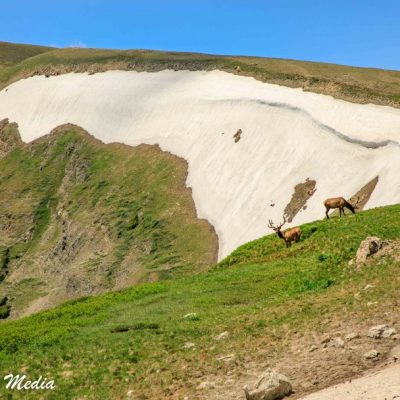 Rocky Mountain National Park-5788