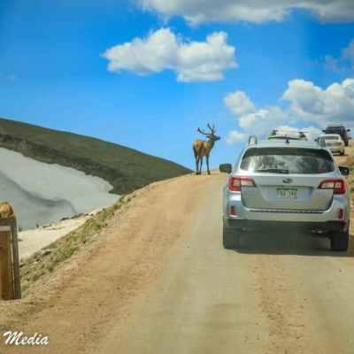 Rocky Mountain National Park-5801