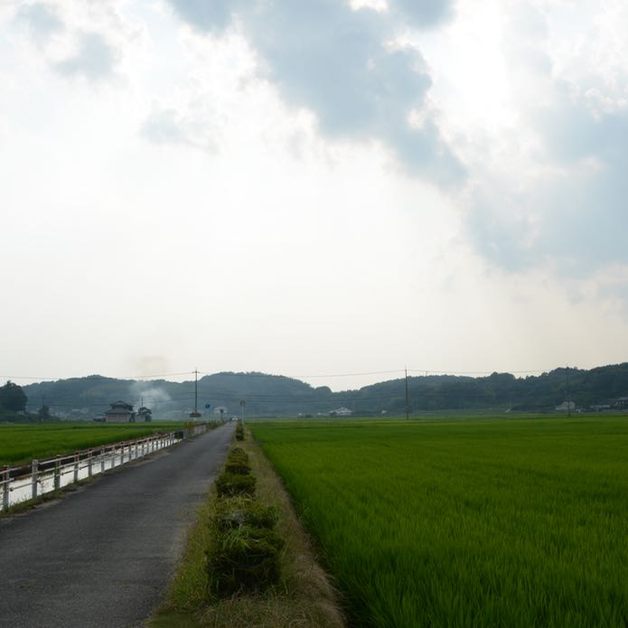 kibi plain cycle ride train tracks