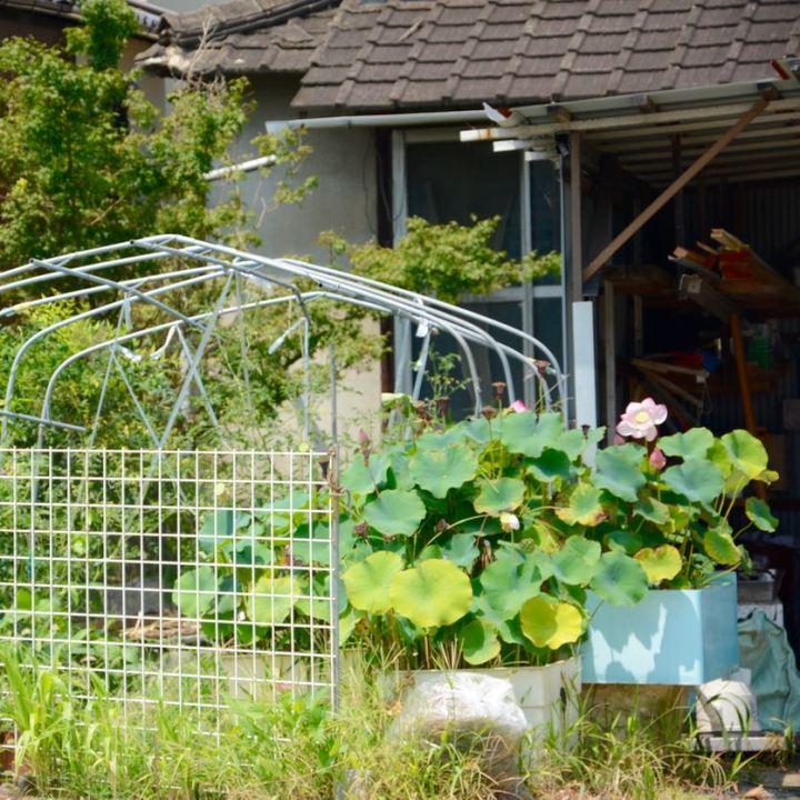 onomichi japan shimanai kaido mukoujima garden
