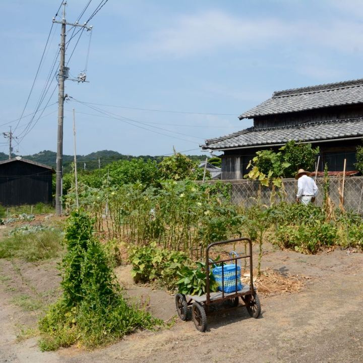 teshima ieura setouchi tirennale local farmer