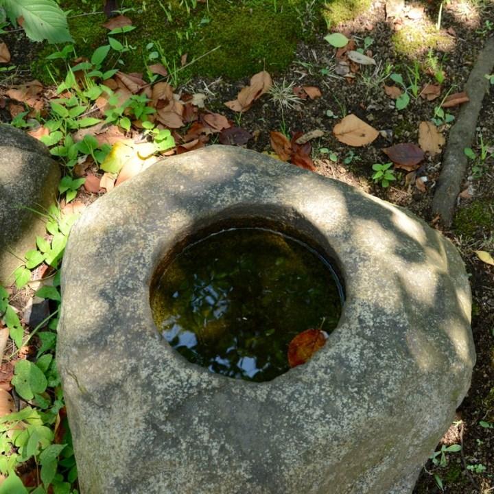 Yanaka tennoji temple water rock