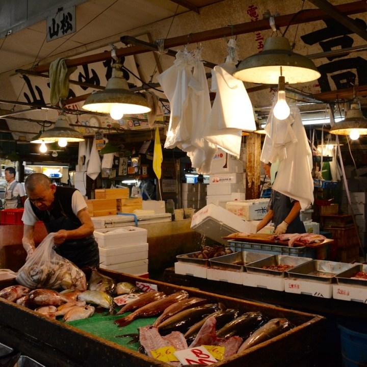 Tsukiji tokyo fish market bagging the fish