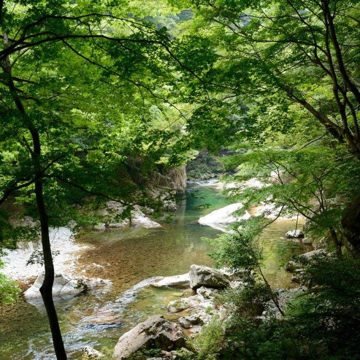 Sandankyo gorge hiroshima japan river trees