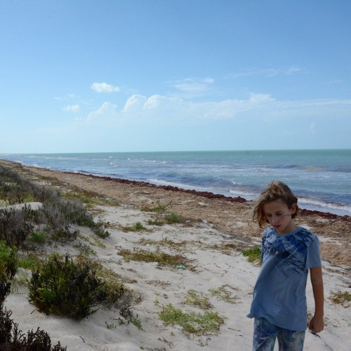 Travel with children kids mexico las coloradas beach