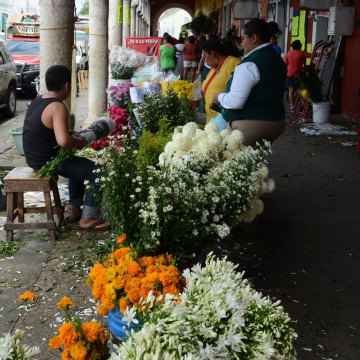Mexico Merida travel with children kids flower stall