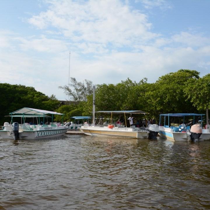 Travel with children kids mexico celestun boat tour