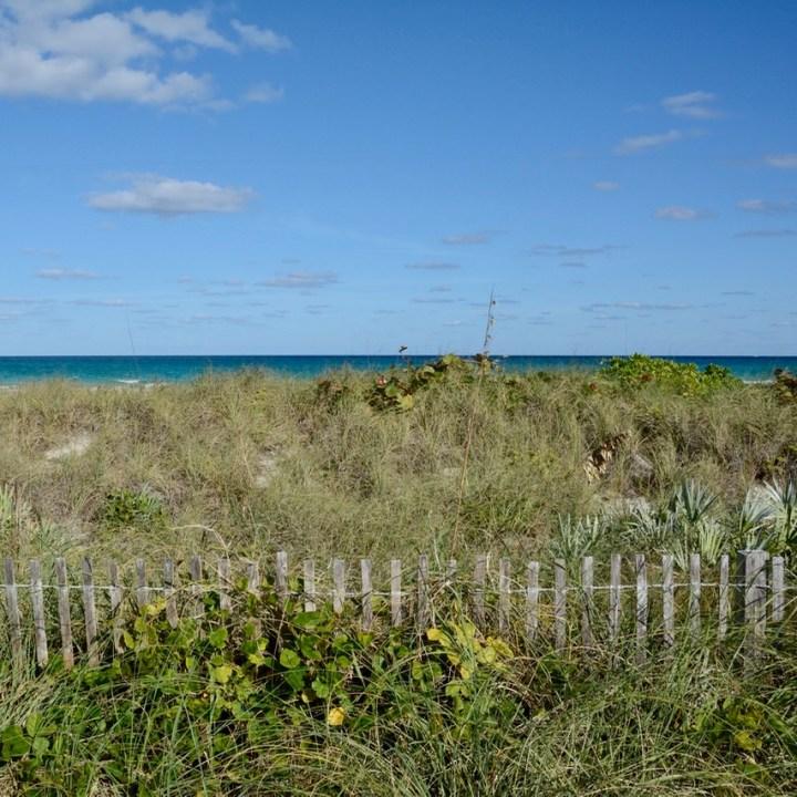 travel with kids children miami south beach dunes