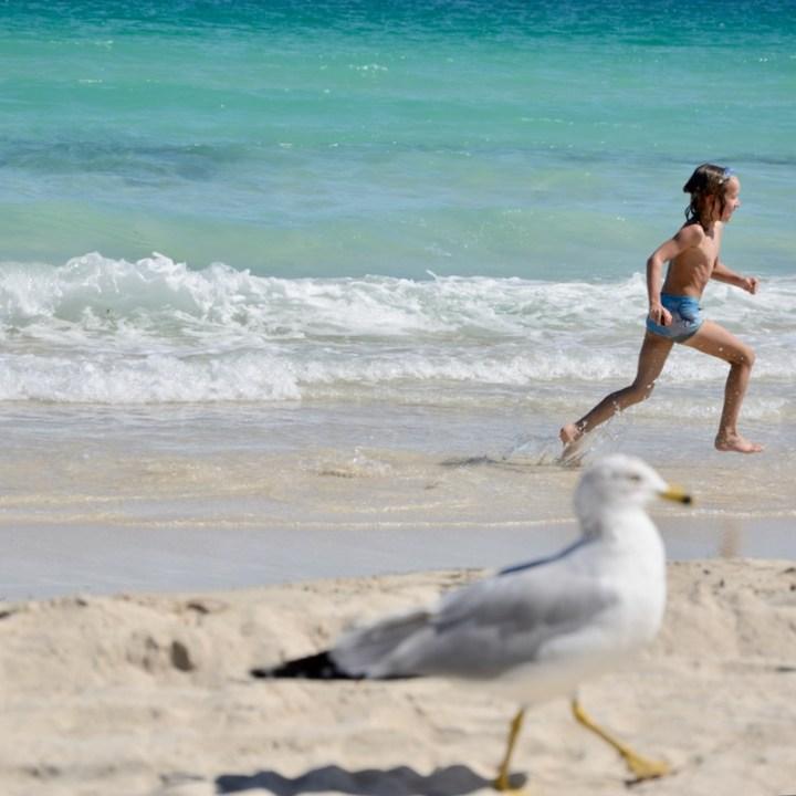travel with kids children miami south beach running
