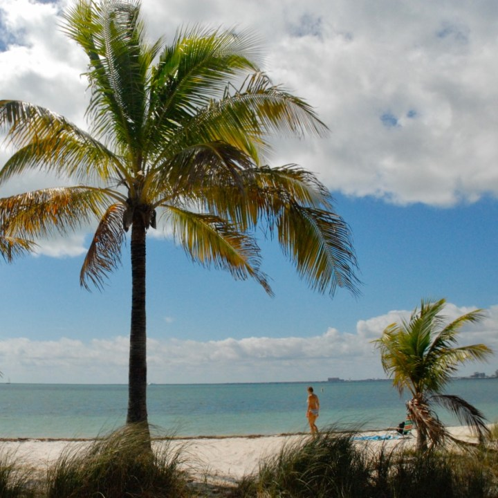 travel with kids children miami usa virginia key beach