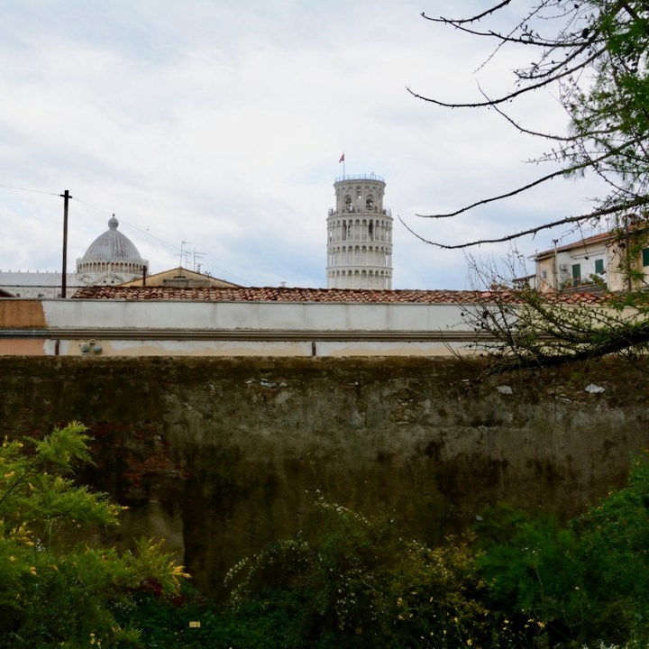 travel with kids children pisa italy botanic garden leaning tower