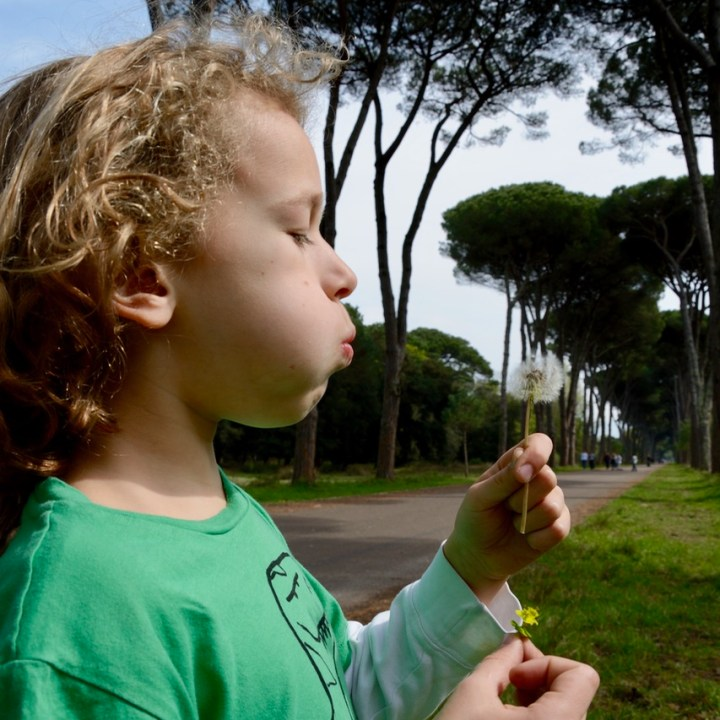 travel with kids children pisa italy nature park san rossore flowers