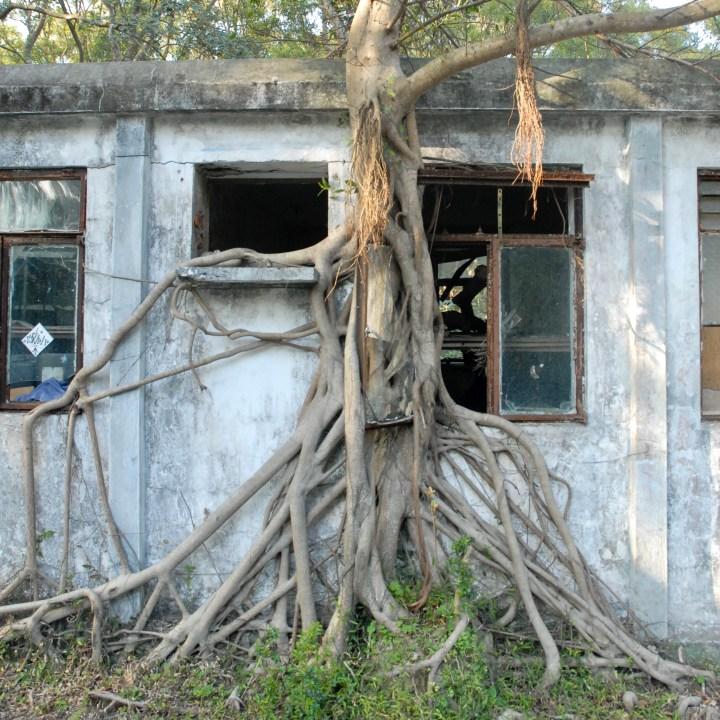 travel with kids children hong kong lantau big buddha abandoned house