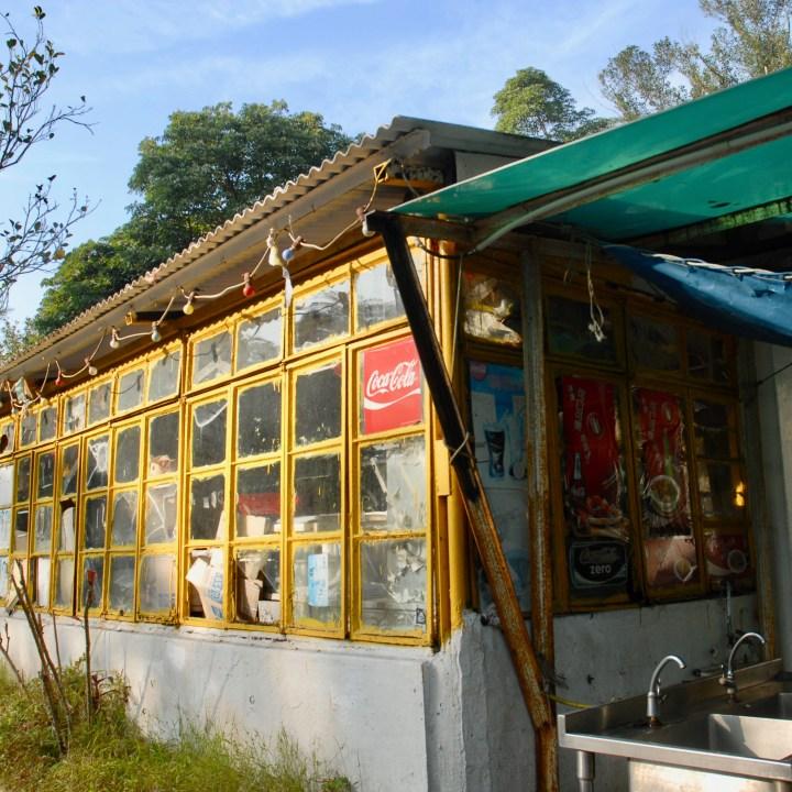 travel with kids children hong kong lantau big buddha restaurant