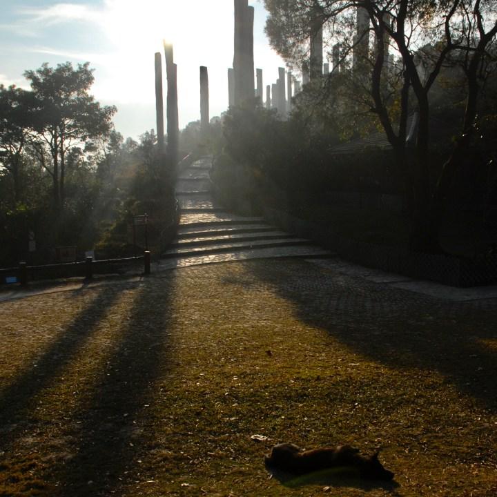 travel with kids children hong kong lantau big buddha path of wisdom