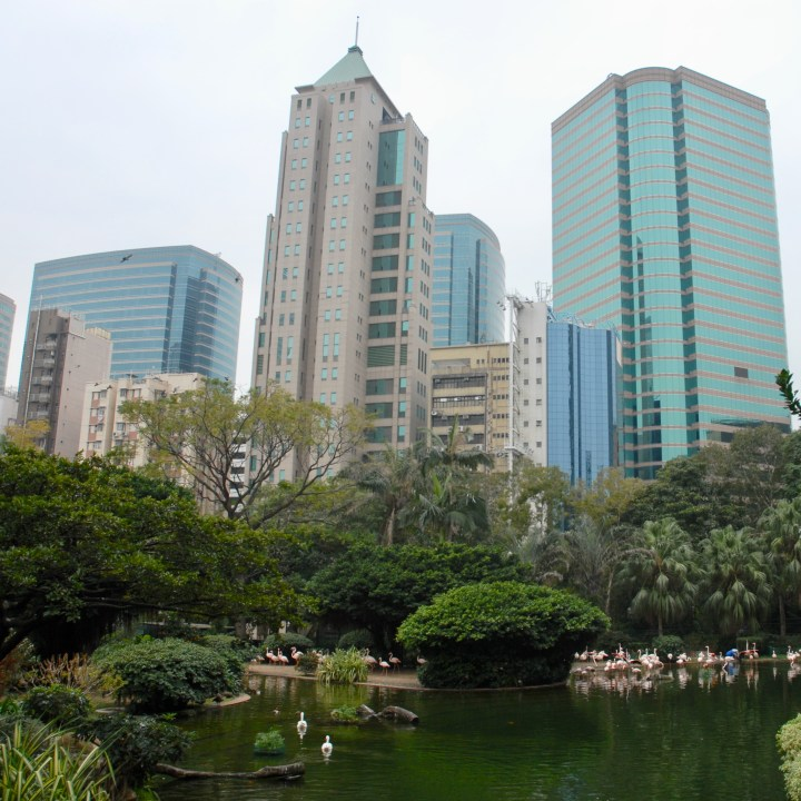hong kong with kids children kowloon park flamingos