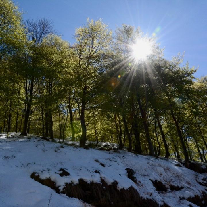 travel with kids children mount spalavera lago maggiore hiking sunshine