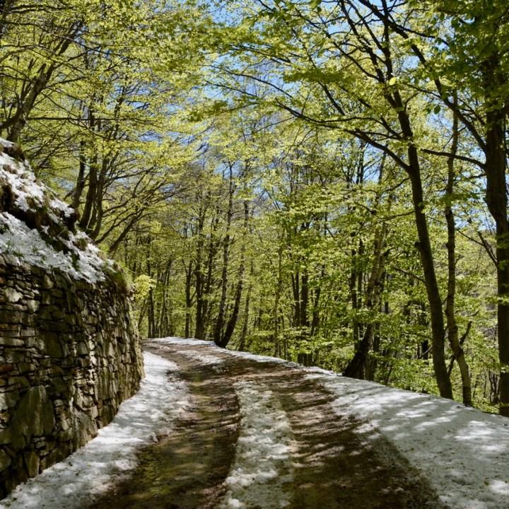 travel with kids children mount spalavera lago maggiore hiking trail