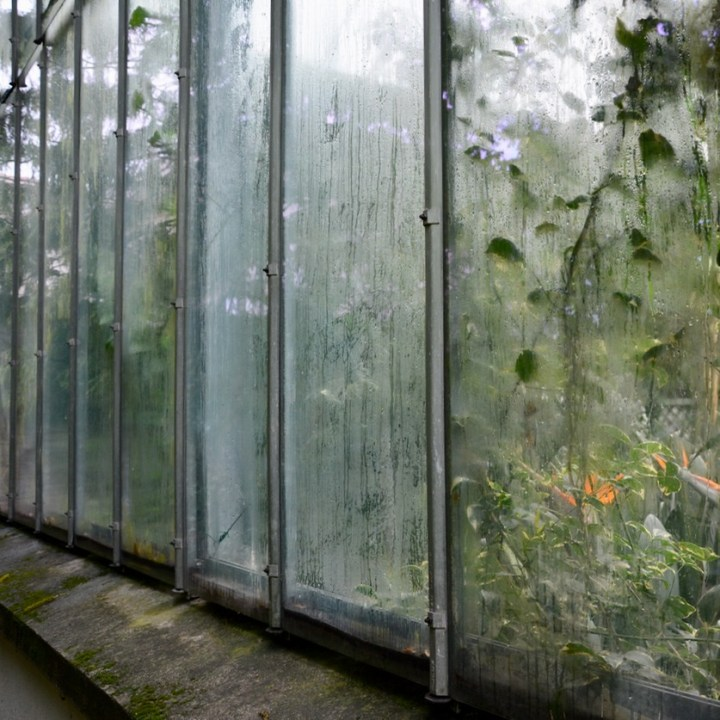 travel with kids children villa taranto botanical garden pallanza lago maggiore glass house