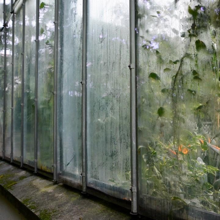 travel with kids children villa taranto botanical garden pallanza lago maggiore glass house