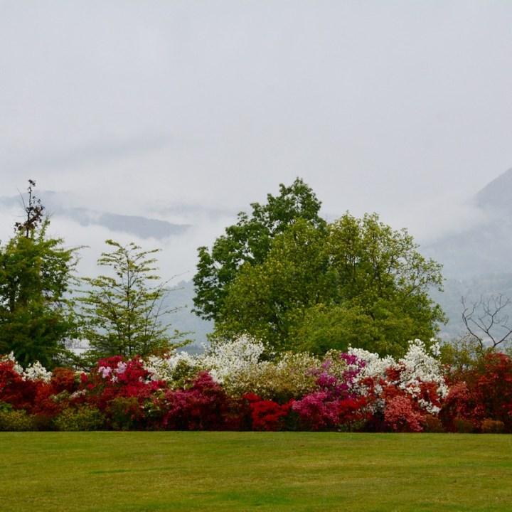 travel with kids children villa taranto botanical garden pallanza lago maggiore azalea