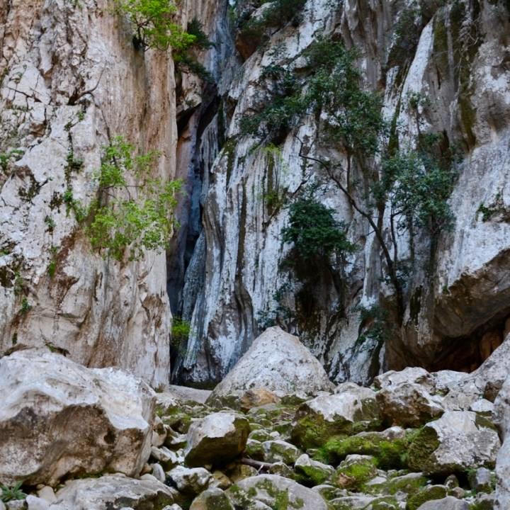 travel with kids children soller mallorca spain hiking torrent de pareis gorge blau