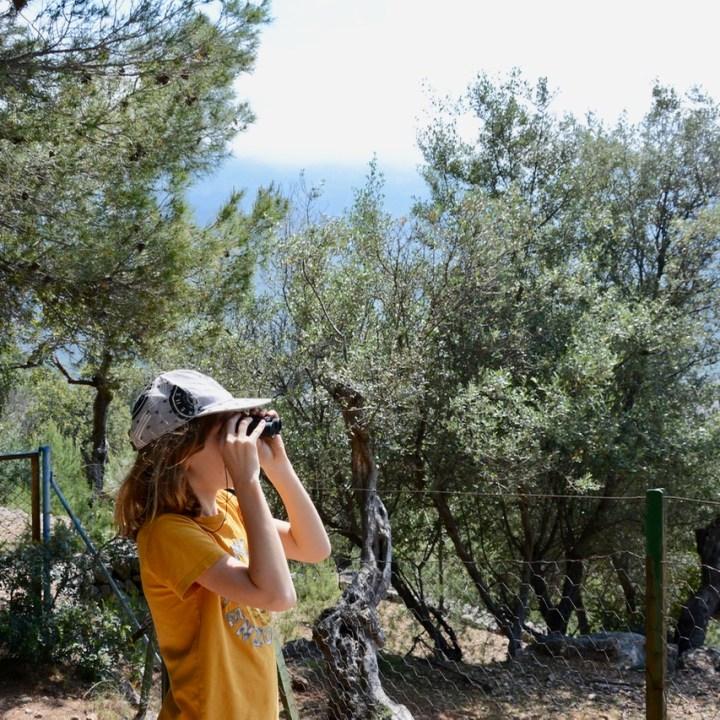 travel with kids children soller mallorca spain mirador ses barques bird watching