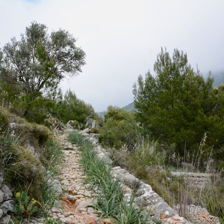 travel with kids children soller mallorca spain mirador ses barques hiking trail
