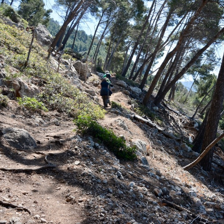 travel with kids children soller mallorca spain coastal hike ben's d'avall to cala deia trail