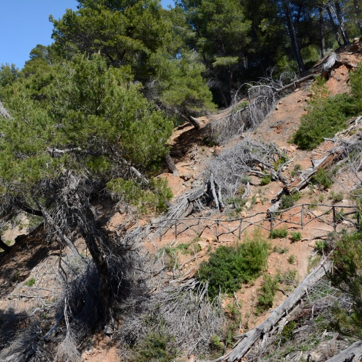 travel with kids children soller mallorca spain coastal hike ben's d'avall to cala deia fence path