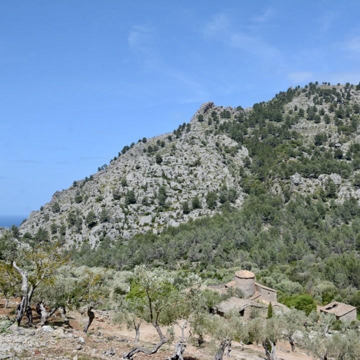 travel with kids children soller mallorca spain hiking cala tuent finca baltix d'avall