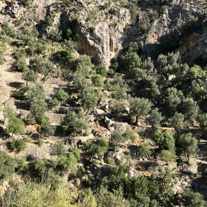 travel with kids children soller mallorca spain three mountain tops hike lofre barring de biniaraix