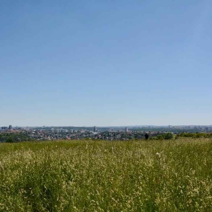 travel with kids prague meadow