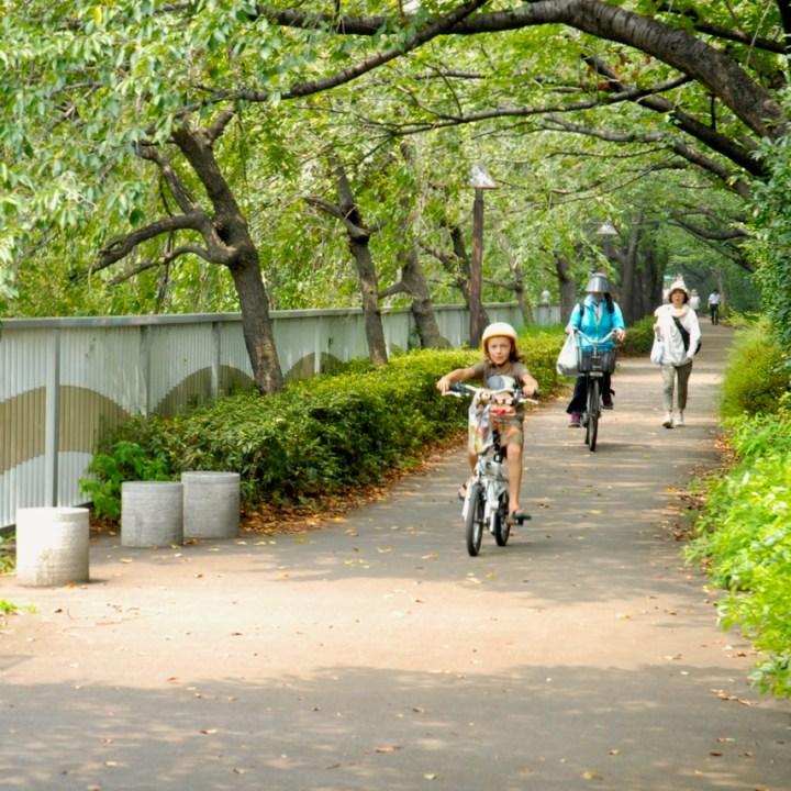 tokyo japan with kids cycling haneda bike path