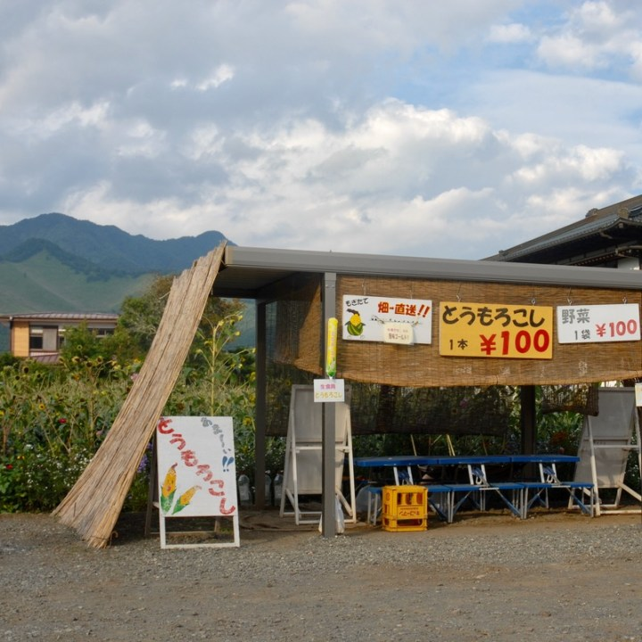 japan with kids mt fuji tokai nature trail veg stand