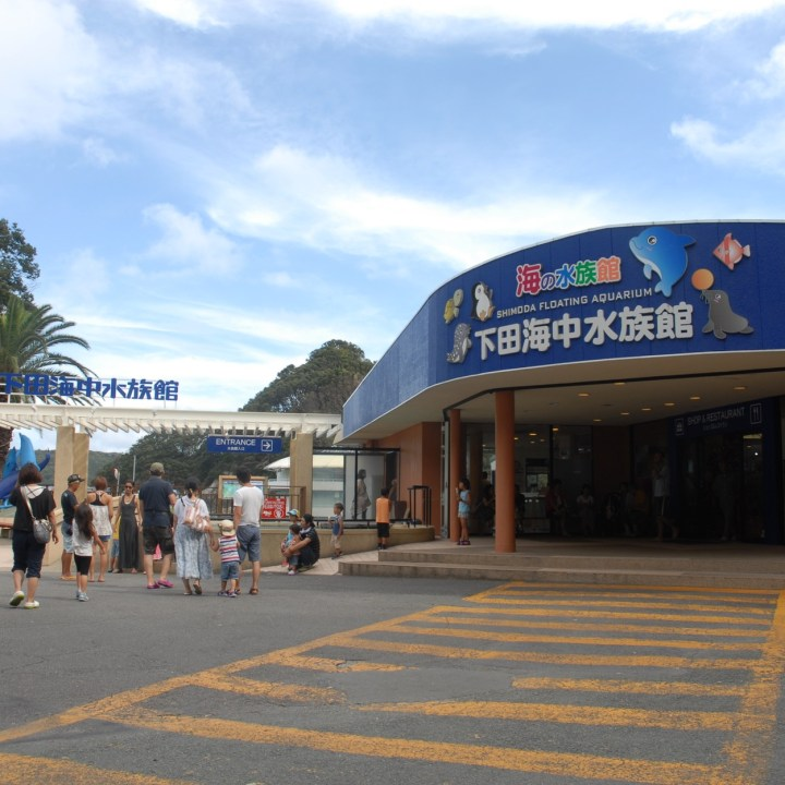 shimoda with kids izu peninsular aquarium entrance