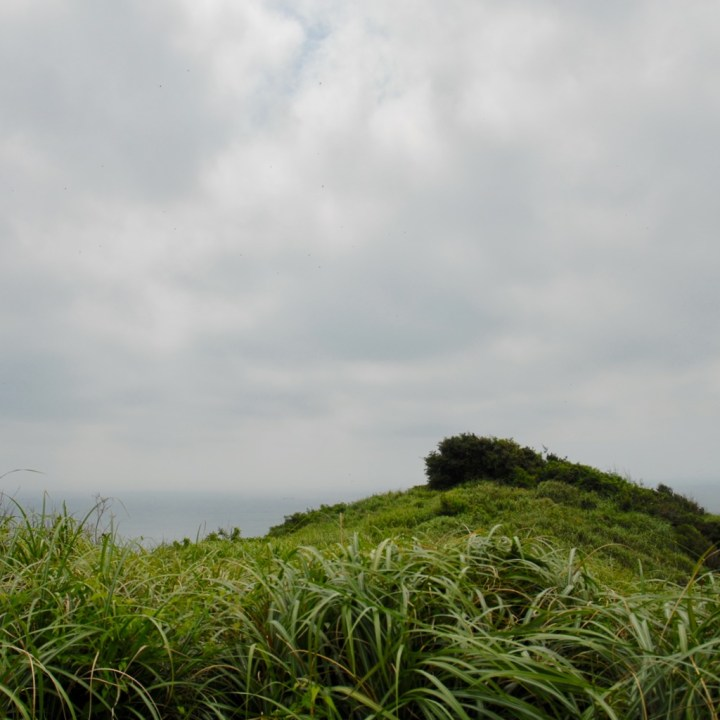 heda japan with kids izu peninsular vegetation