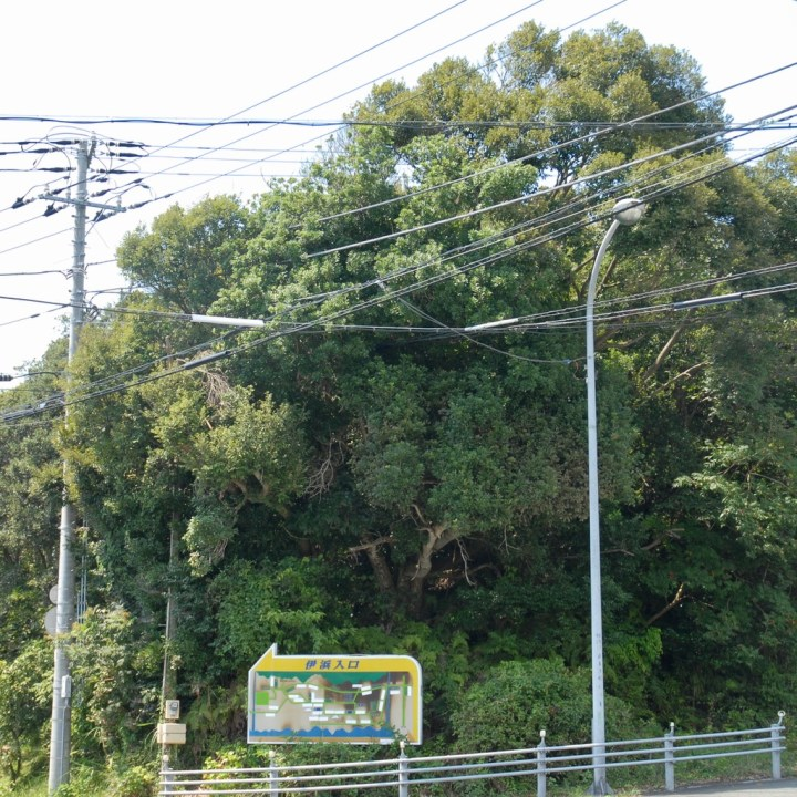 heda japan with kids izu peninsular road sign