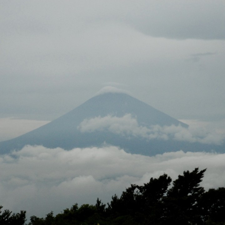 japan with kids mt fuji tokai nature trail fujisan