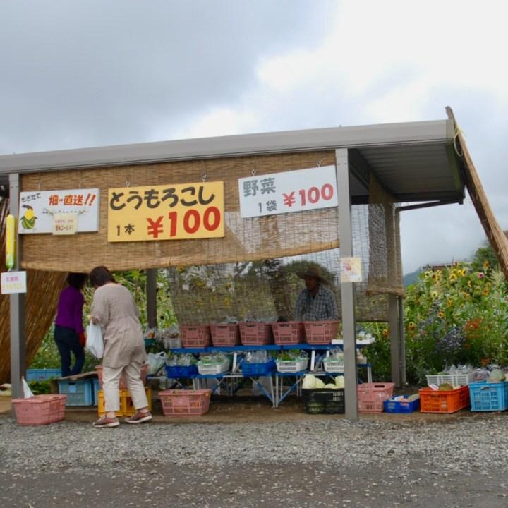 travel with kids japan fujiyoshida hiking farmer's stand