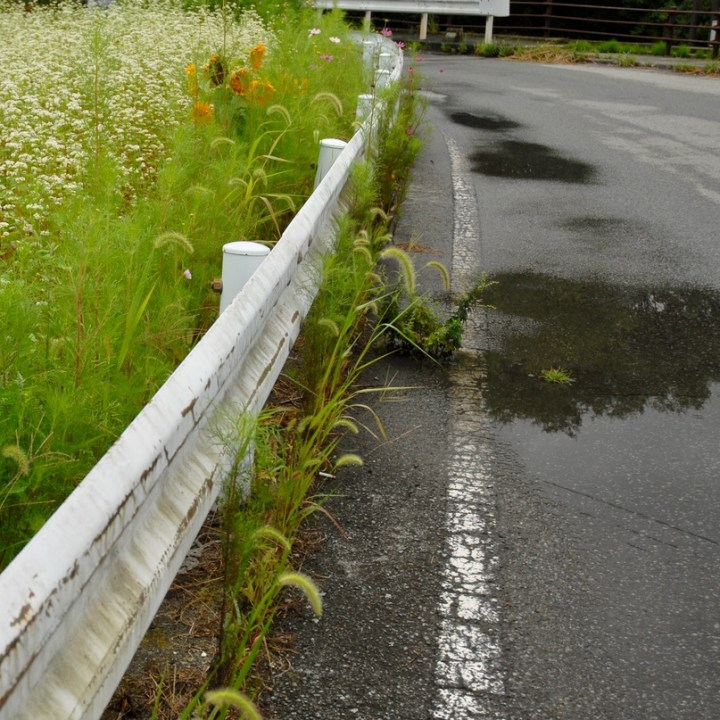 travel with kids japan fujiyoshida hiking puddles