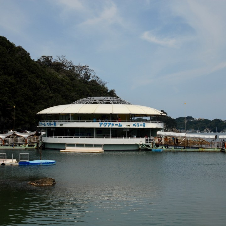 Shimoda, Japan | A Fun Family Day Out at the Floating Aquarium in Shimoda