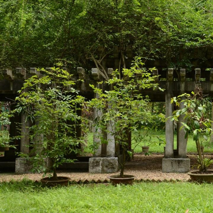 travel with kids vietnam hanoi ho chi minh botanical garden