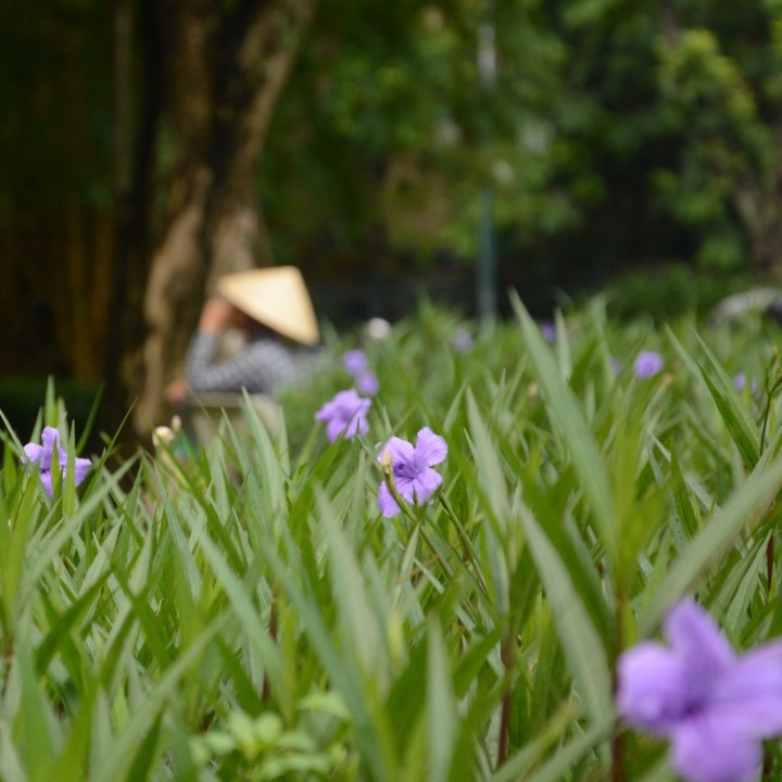 Hanoi, Vietnam| Visiting the Scenic Hoan Kiem Lake