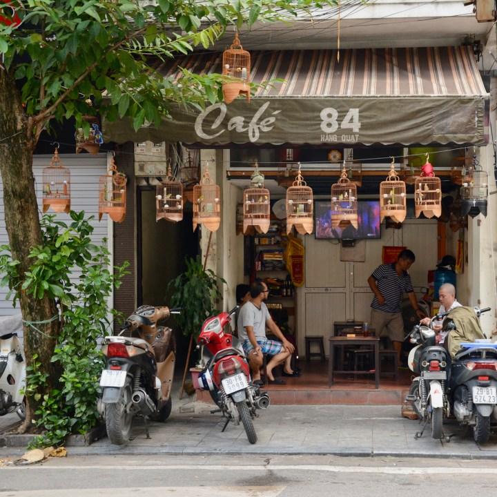 travel with kids vietnam hoi an bird cages