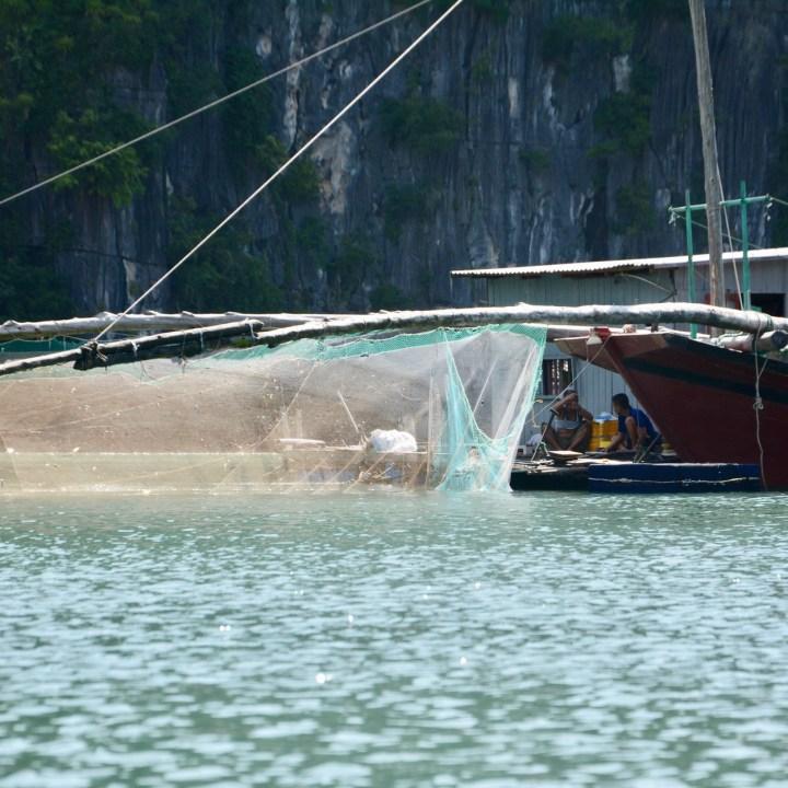 vietnam with kids ha long bay fisher net