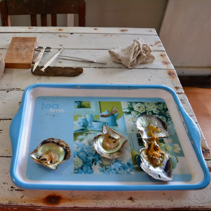 vietnam with kids ha long bay oysters