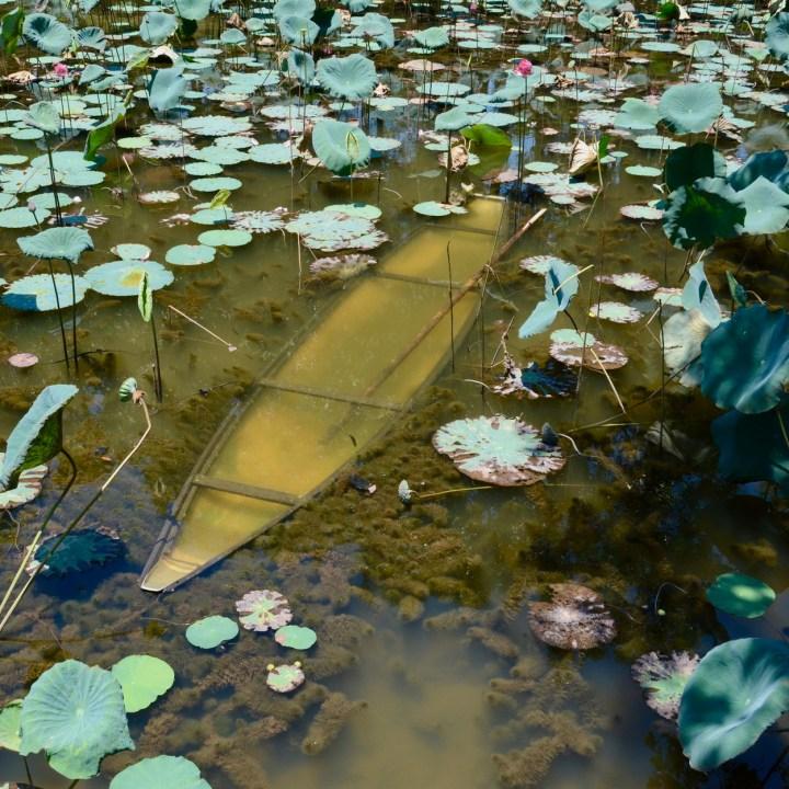 vietnam travel with kids hue sunken canoe