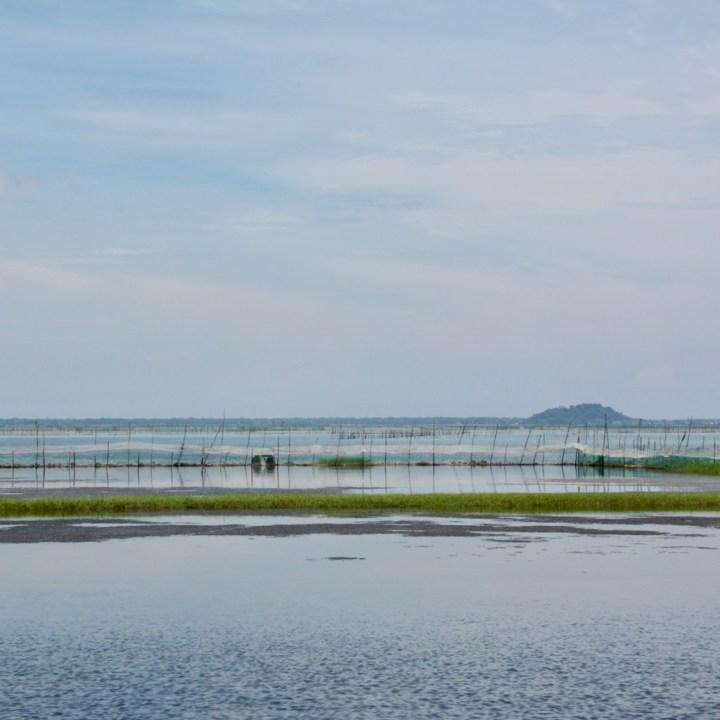 vietnam with kids cai lau lagoon fishing ponds