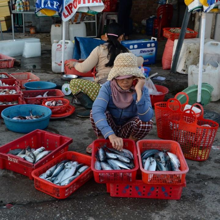 photo tour vietnam hoi an mobile